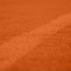 Licence marketing sport business
